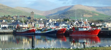 Haven, Dingle