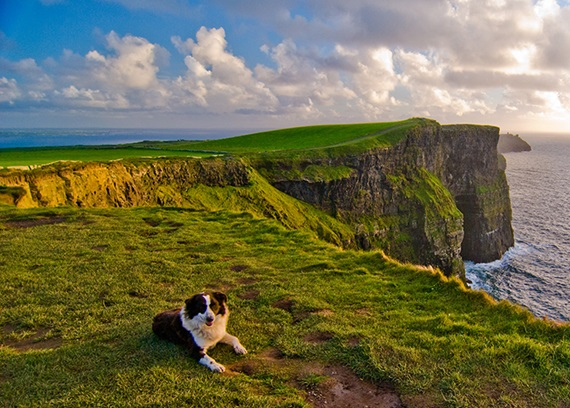 Cliffs of Moher,Clare, Ierland