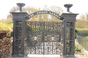 The poison garden in Alnwick Garden, Groot-Brittannië