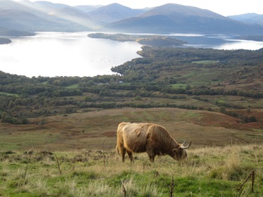 Loch Lomond & The Trossachs Nationaal Park, Schotland
