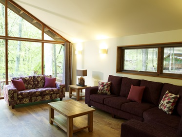 Woonkamer, Silver Birch Cabin, Blackwood Forest Holidays