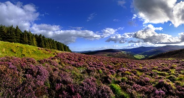 Wicklow Hills, Ierland